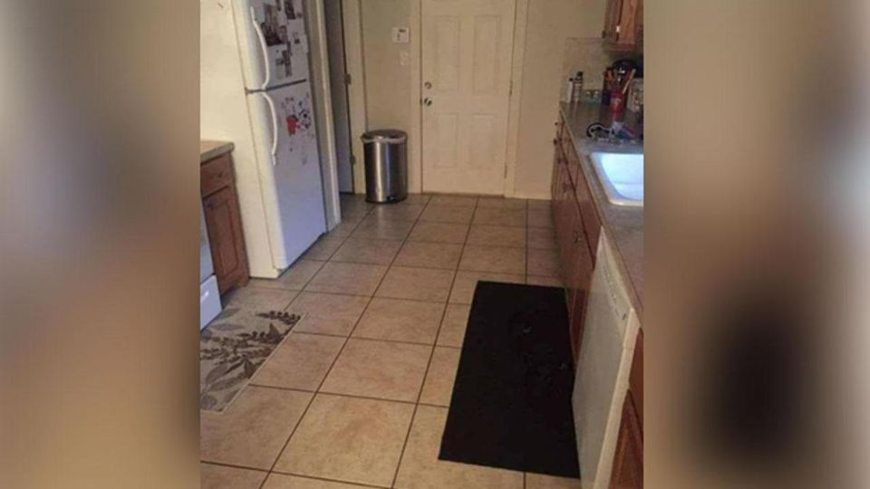 can you find the dog hiding in this photo of a kitchen comedy gem