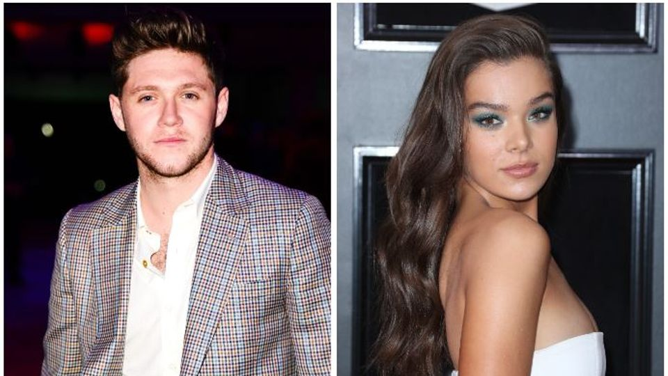 here 39 s why fans think niall horan and hailee steinfeld are. Black Bedroom Furniture Sets. Home Design Ideas