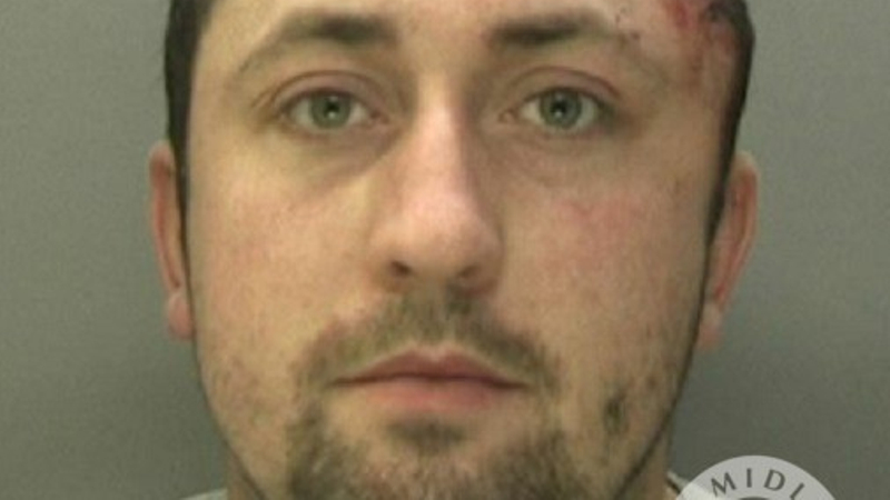 Remembrance Day van thief jailed