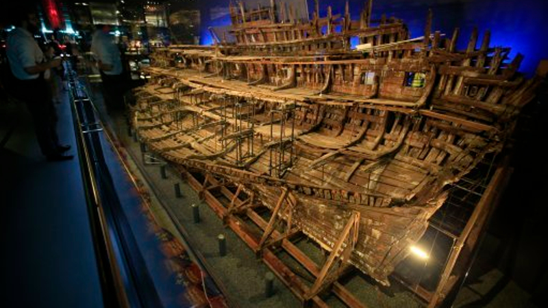 Crucial pieces of the Mary Rose jigsaw revealed