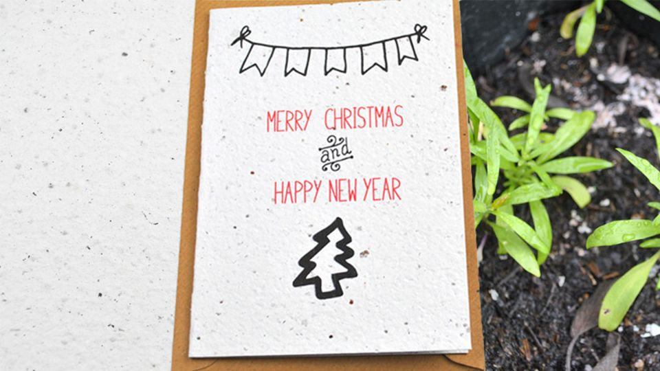 7 alternatives to christmas cards christmas countdown radio aire alternatives to christmas cards plantable seed paper m4hsunfo