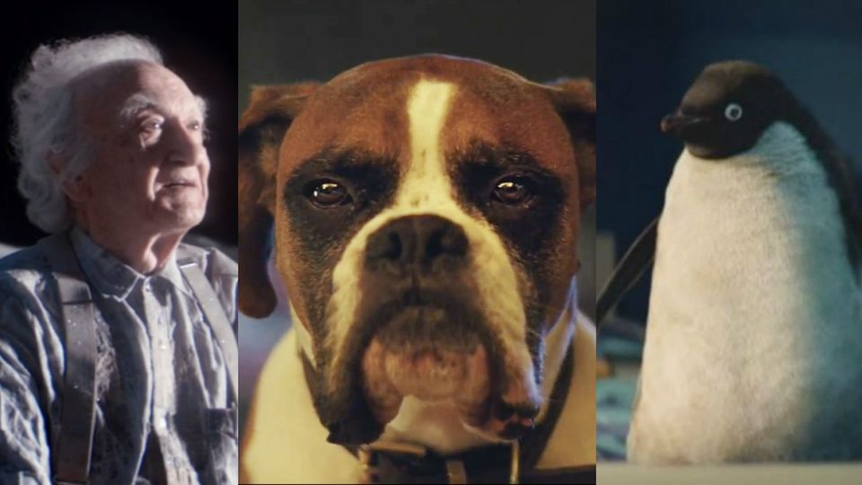 WATCH: The best bits of John Lewis\' Christmas adverts | Trending ...
